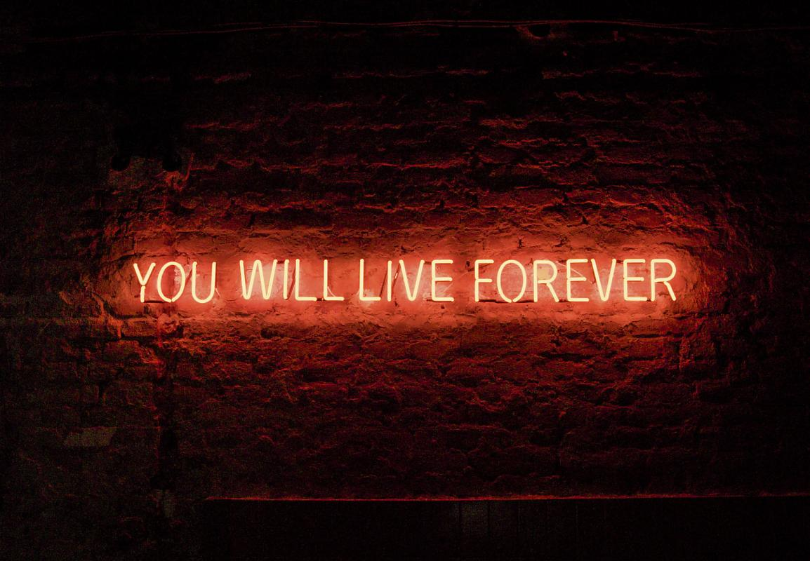 Tim Etchells / Red Sky at Night / installation (2010) by Jens Weyers.