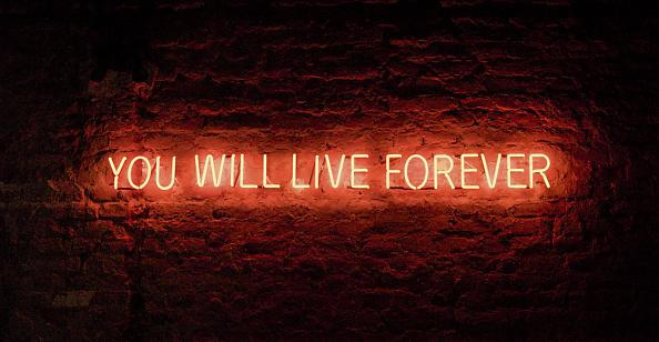 Tim Etchells / Red Sky at Night / instalacja (2010) Jens Weyers.